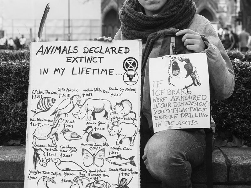 The Rebellion Has Brought the Climate Crisis to the Forefront… Now It Is Time to Address Speciesism