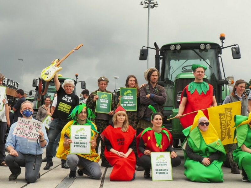 Why Is Animal Rebellion Standing with UK Farmers