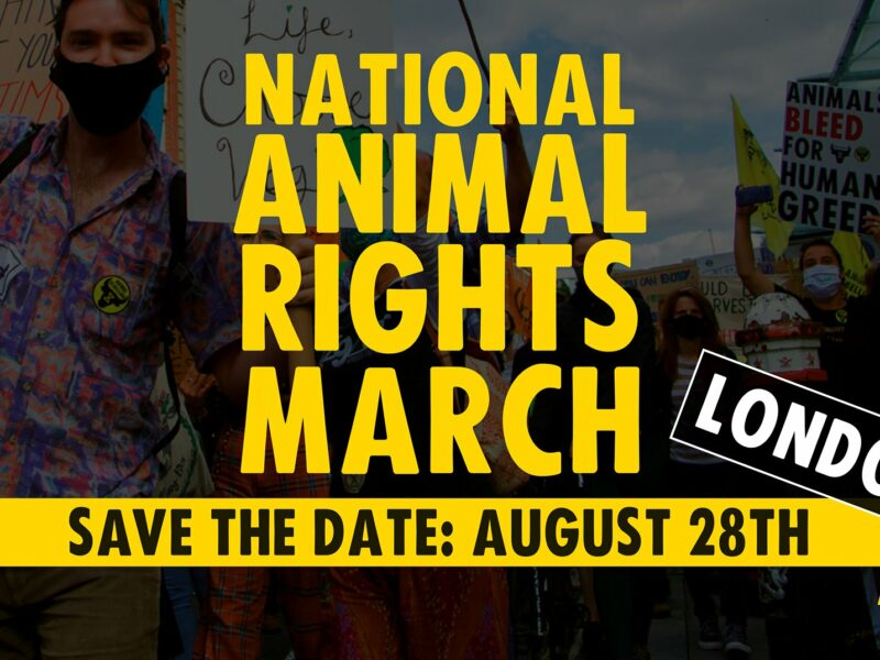 Why We Are Marching From Smithfield Market