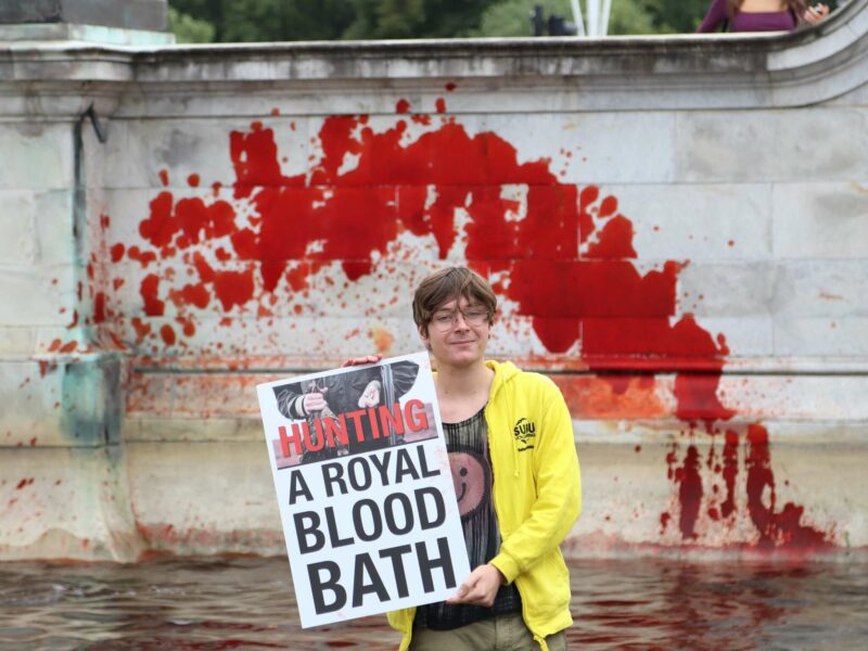 ANIMAL AND CLIMATE PROTESTORS DYE BUCKINGHAM PALACE FOUNTAINS BLOOD RED