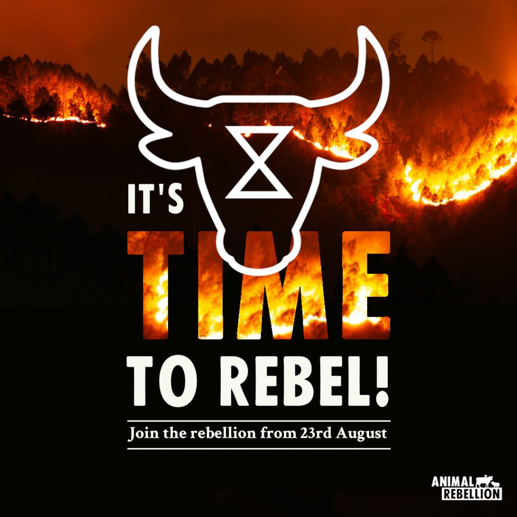 A poster saying 'It's time to rebel' with a photo of a forest fire at night time as a backdrop