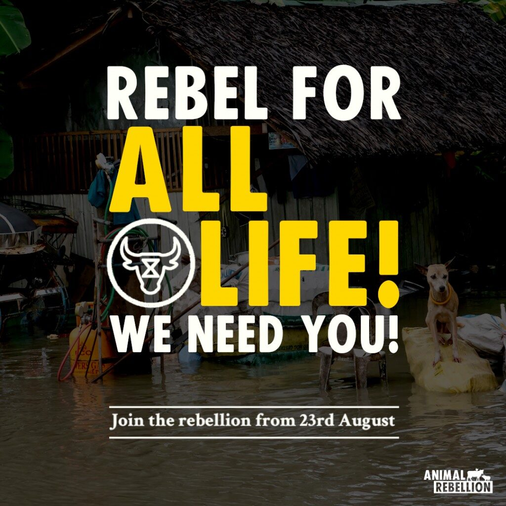 A poster saying 'Rebel for all life! We need you!'